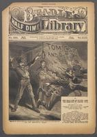 Tom Cat and pard, or, The dead-set at Silver City
