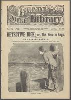 Detective Dick, or, The hero in rags