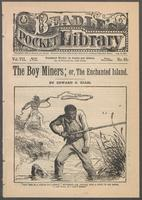 boy miners, or, The enchanted island