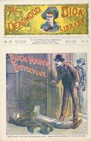 Buck Hawk, detective, or, The messenger boy's fortune