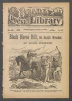 Black Horse Bill, the bandit wrecker, or, Two brave boys to the rescue