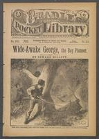 Wide-awake George, the boy pioneer, or, Life in a log cabin