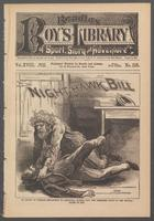 Night-Hawk Bill, or, The New York sportsman's clew