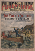 The twenty doctors, or, The mystery of the coast