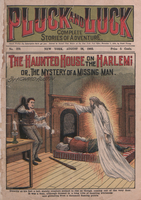 The haunted house on the Harlem, or, The mystery of a missing man