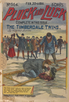 The Timberdale twins, or, The boy champion skaters of Heron Lake