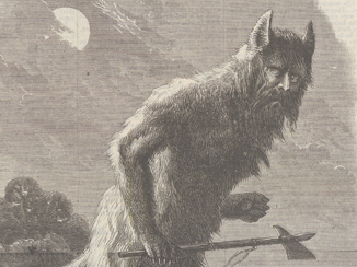 The wolf demon, or, The queen of the Kanawha cover